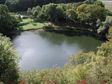 Frickenhäuser See