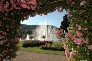 Rosengarten Bad Kissingen