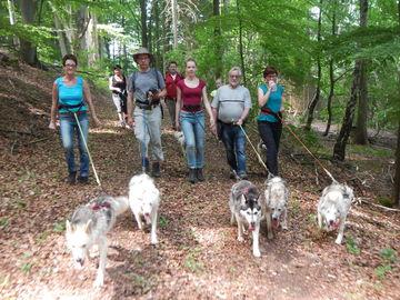Husky Trekking Tour Rhön - Tiererlebnis Incentive