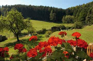 Bild:Waldhaus Wittgenthal Aussicht