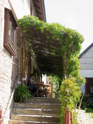 Bild:Zum grünen Baum Eingang