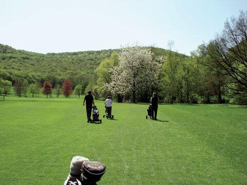 Bild:Golfplatz Bad Kissingen