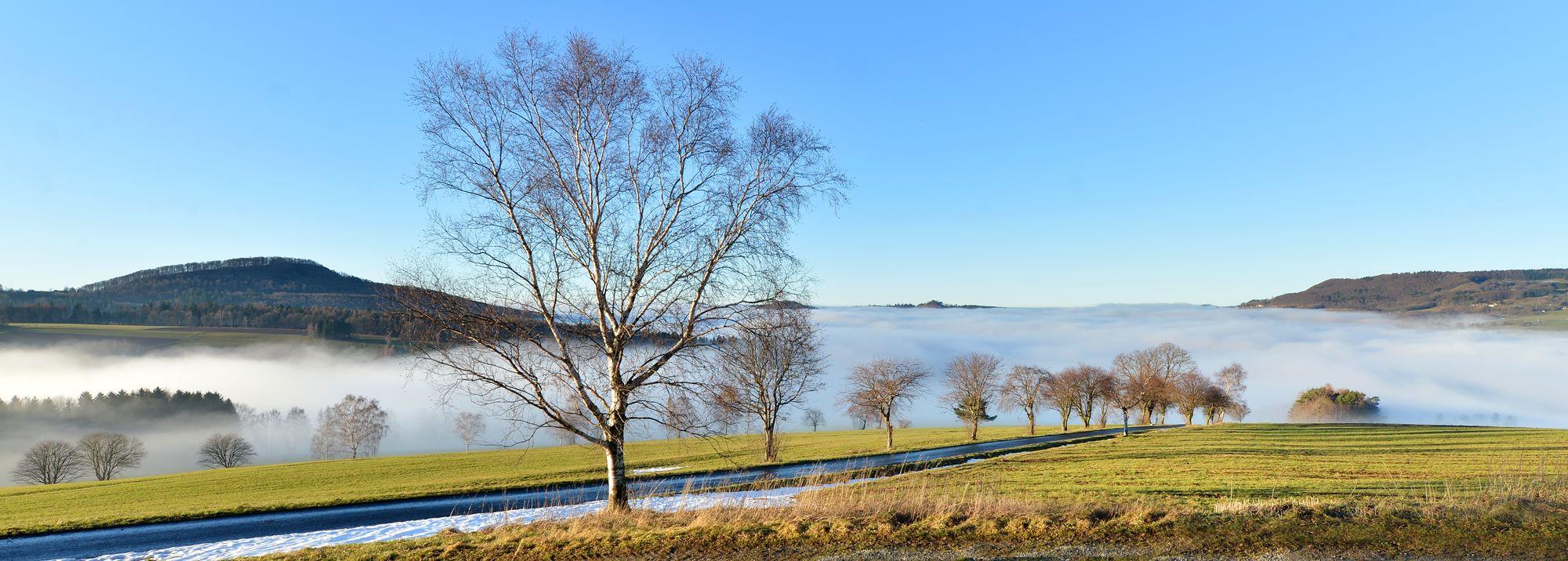 Gersfelder Kessel im Nebel