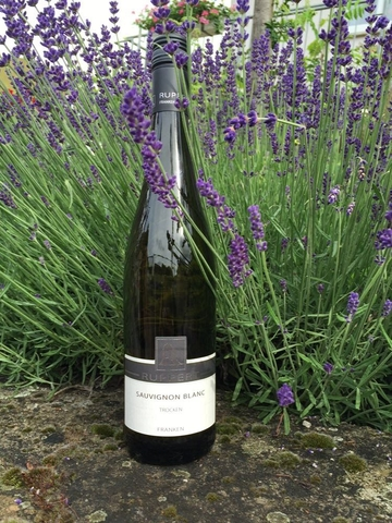 Weinbau trifft Kulinarik Juli