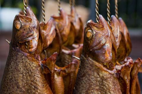 Fisch Holger leue