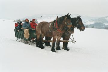 Pferdeschlittenfahrten3