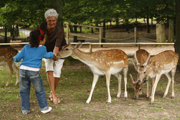 Wildpark Klaushof, Bad Kissingen